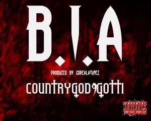 BIA_COVER